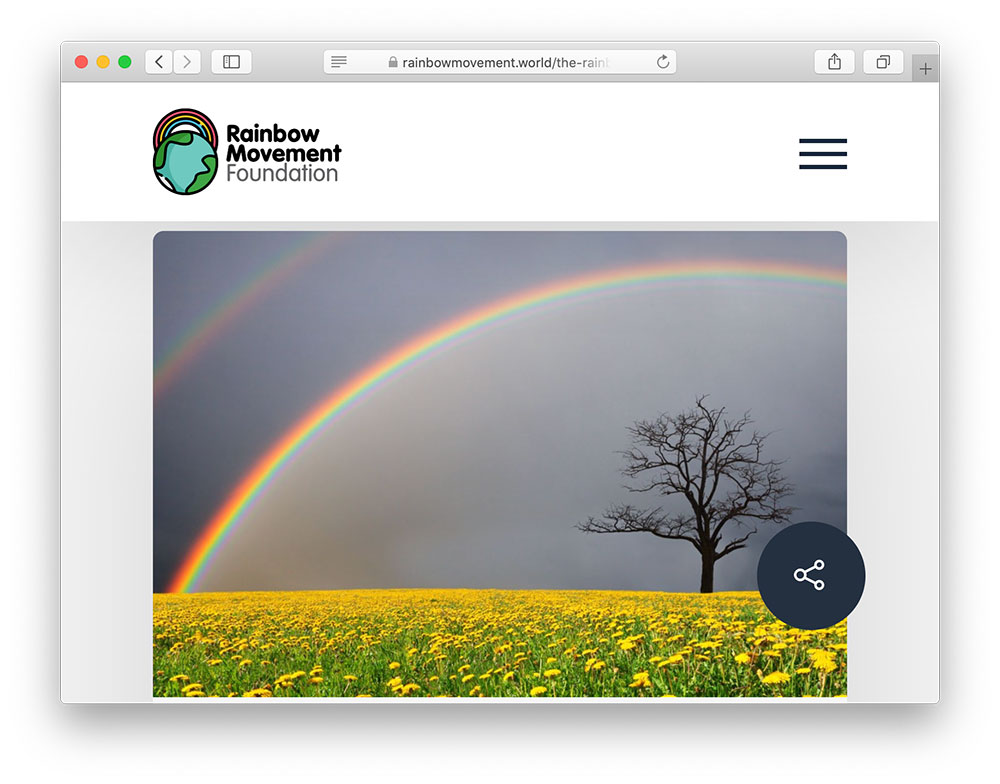 rainbow movement foundation